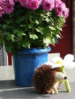 De wensenlijst van Sophia was inclusief deze lieve egel die schuilt onder een margriet. De bloem kan los van de egel