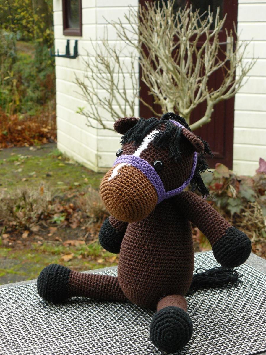 Aan de hand van een foto de pony laten lijken op het echte exemplaar
